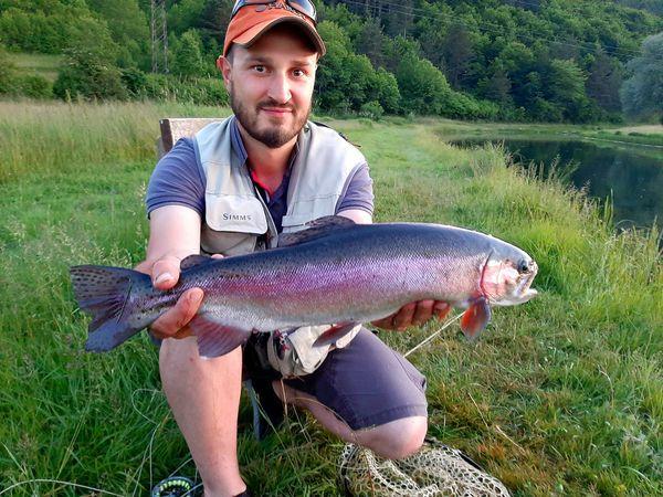 Velike  ribe  Gacke